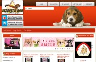 StarPetsHub Pet Supplies, Boading Services, Grooming Service In Singapore