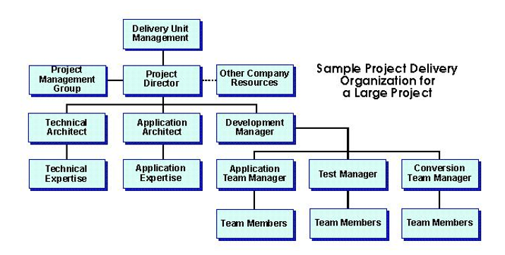 project delivery organization for large project